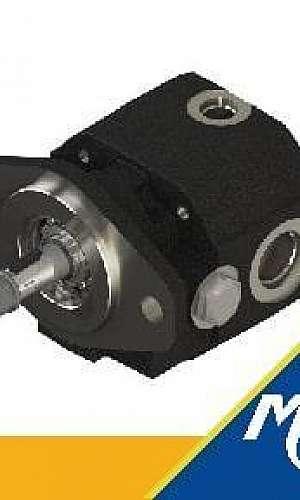 Fornecedor de motor hidráulico de engrenagem